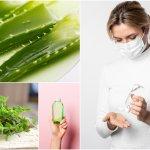 Ako si vyrobiť dezinfekčný gél na ruky? Teraz sa ti zíde