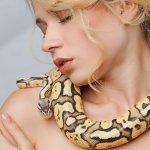 Snár: Aký had v sne nie je pohromou? Žltý, čierny alebo biely?