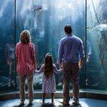 Snár: Akvárium v sne – rozbité či s množstvom rybičiek?