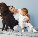 Ktoré sú najlepšie psy do rodiny s deťmi? Vyber si správne!