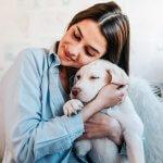 Snár: Pes v sne – bol čierny, biely alebo hrýzol? Pozri, čo ťa čaká