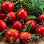 Na tieto jesenné bylinky a ich účinky určite nezabúdaj!