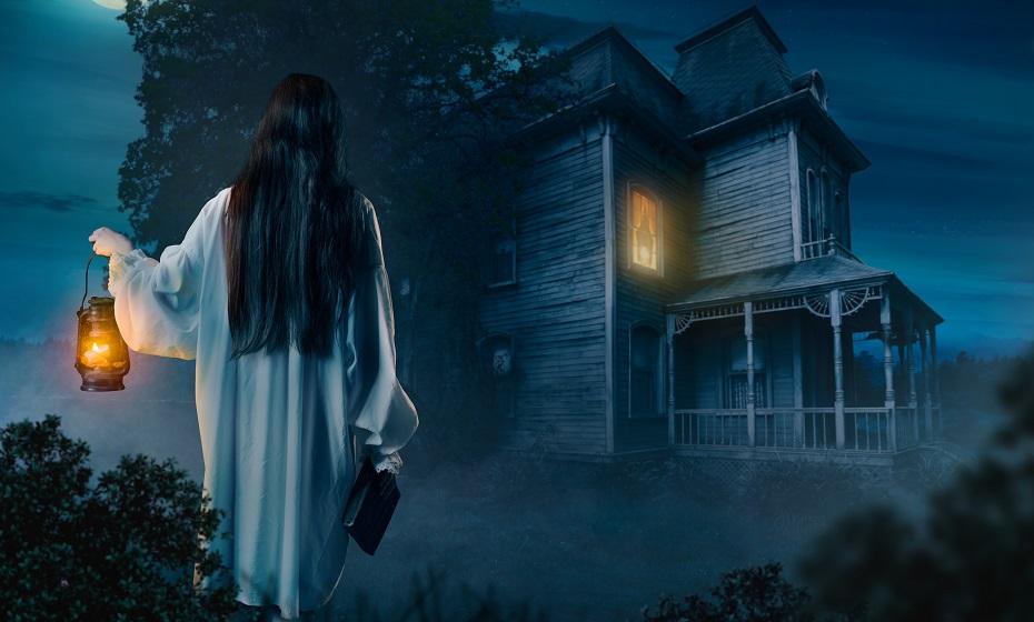 dom v sne