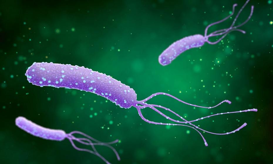 Aké sú príznaky Helikobaktera? Spoznaj tráviace aj kožné symptómy