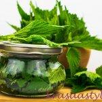 Recepty zo žihľavy: Vyrob si žihľavový sirup, med, tinktúru, ocot či tonikum