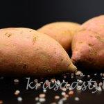 Tu sú dôvody, prečo sa oplatí jesť bataty: Spoznaj tipy na pestovanie sladkých zemiakov